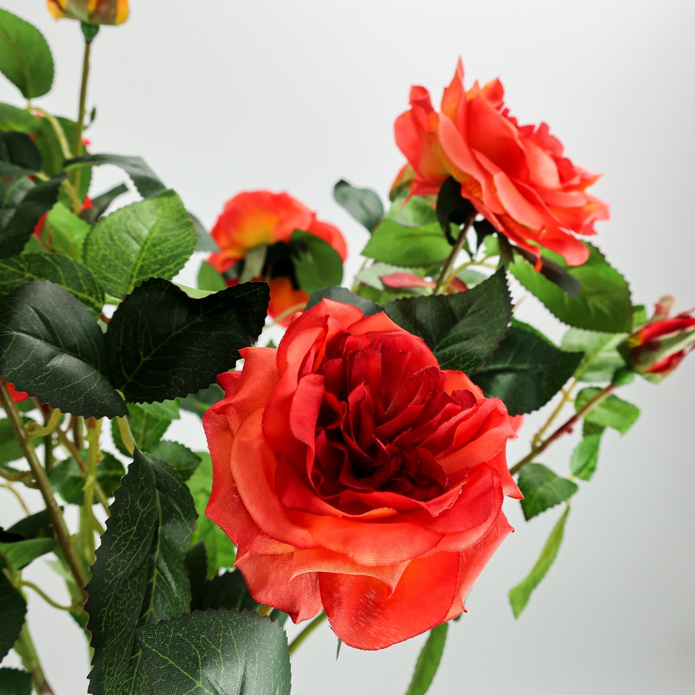 Arbre fleuri rouge